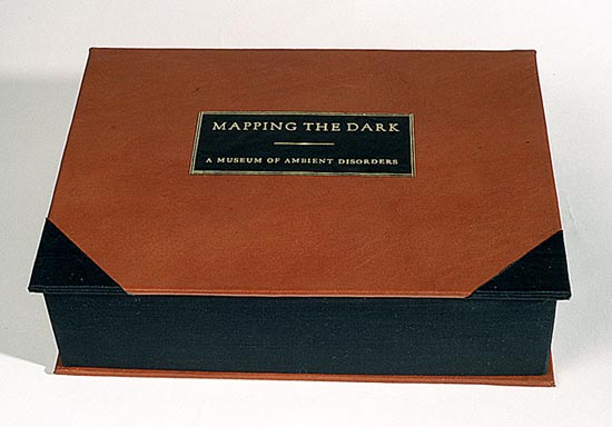 Mapping the Dark-A Museum of Ambient Disorders